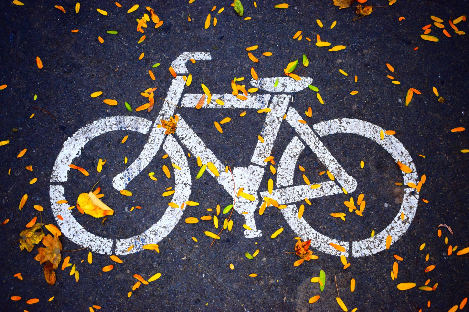 bs magazine bonus bici